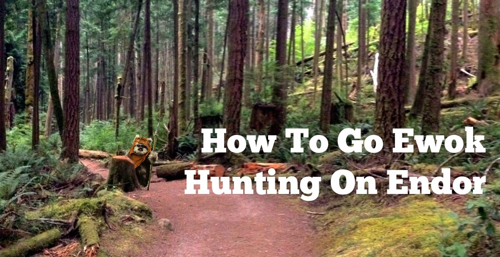 How To Go Ewok Hunting On Endor