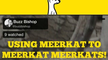 Using Meerkat to Meerkat Meerkats